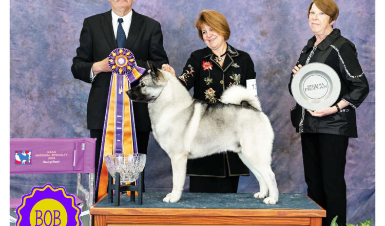 "2018 National Specialty Winner ""Armani"""
