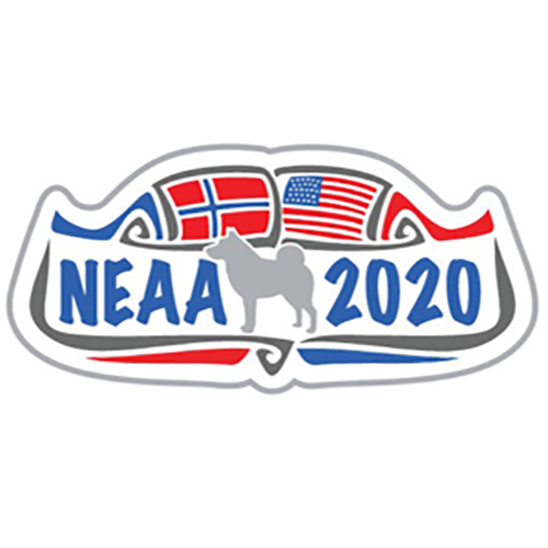 2020 NEAA National logo